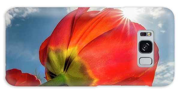 Galaxy Case featuring the photograph Sunbeams And Tulips by Adam Romanowicz