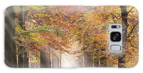 Sunbeams In A Forest In Autumn Galaxy Case