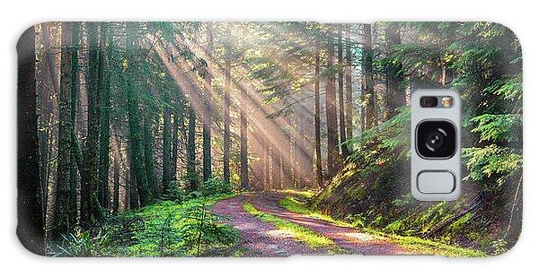 Sunbeams In Trees Galaxy Case