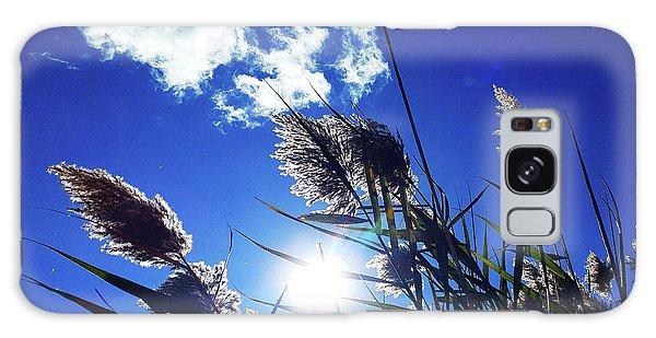 Sunburst Reeds Galaxy Case