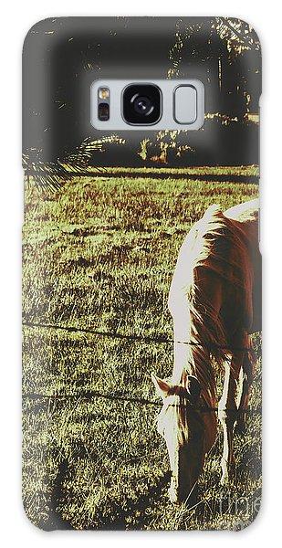 Tint Galaxy Case - Sundown Horse Meadow by Jorgo Photography - Wall Art Gallery