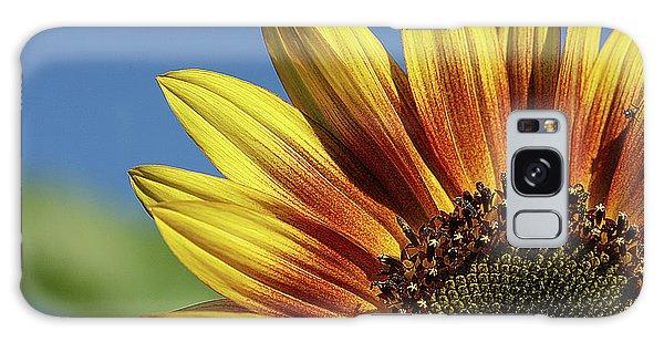 Sunflower 38 Galaxy Case