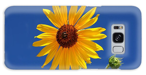 Sunflower Against Blue Sky Galaxy Case by Tracie Kaska