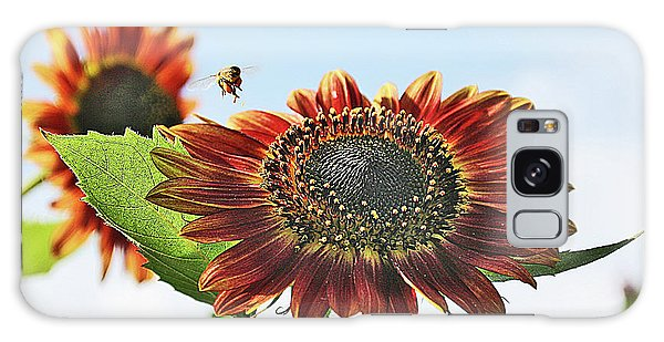 Sunflower And Bee Galaxy Case