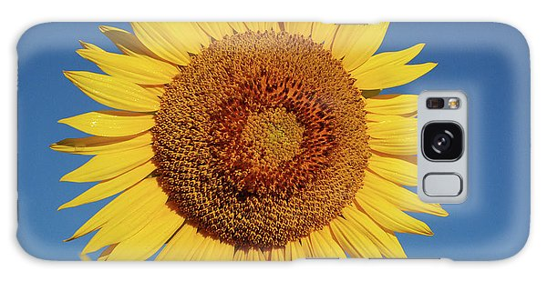 Sunflower And Blue Sky Galaxy Case by Nancy Landry