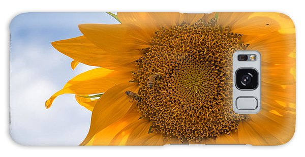 Sunflower And The Bee  Galaxy Case