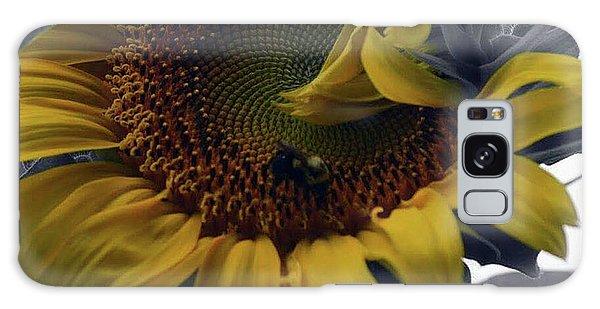 Sunflower Bee Galaxy Case