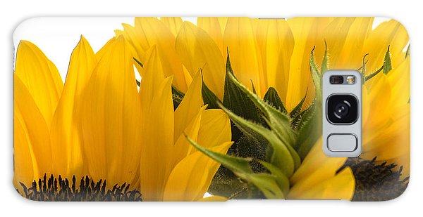 Sunflower Bright Galaxy Case