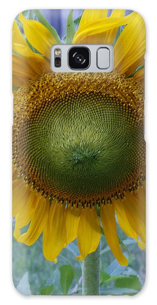 Sunflower Galaxy Case by Catherine Alfidi