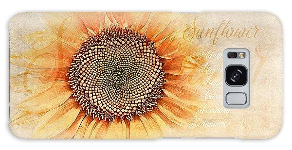 Pollen Galaxy Case - Sunflower Classification by Terry Davis