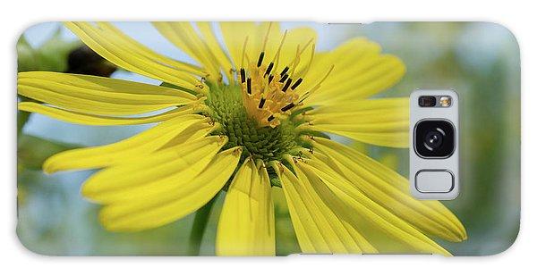 Sunflower Close-up Galaxy Case