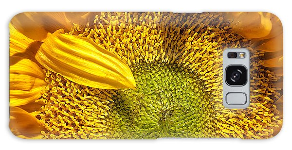 Sunflower Closeup Galaxy Case