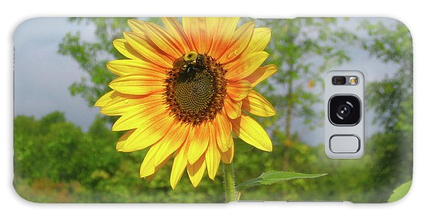 Ah, Sunflower Galaxy Case by Deborah Dendler