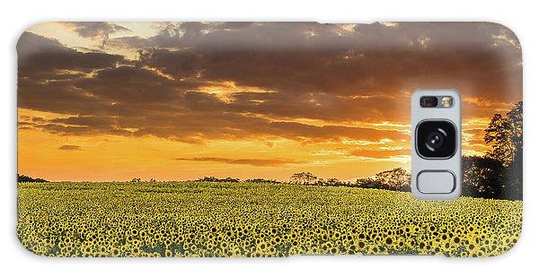 Sunflower Fields Sunset Galaxy Case