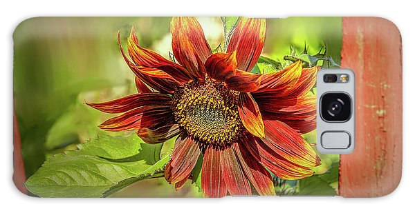 Galaxy Case featuring the photograph Sunflower #g5 by Leif Sohlman