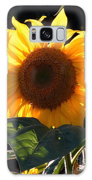 Sunflower - Golden Glory Galaxy Case