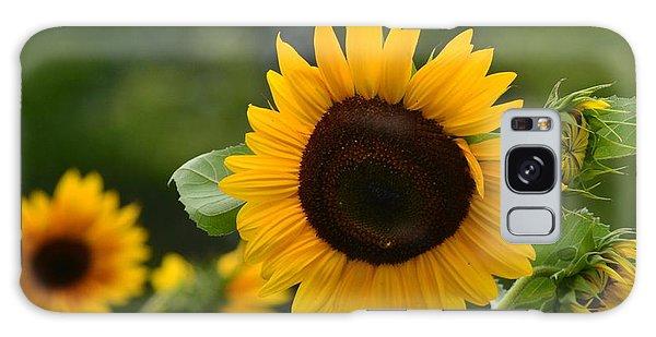 Sunflower Group Galaxy Case