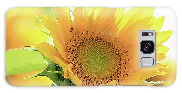 Sunflower In Golden Glow Galaxy Case