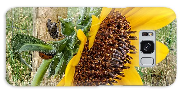 Sunflower Joy Galaxy Case
