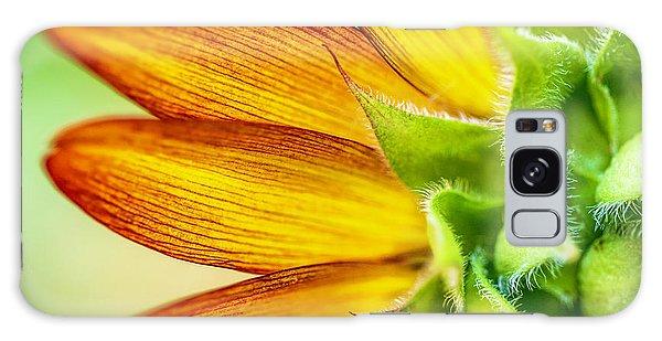 Sunflower Macro 1 Galaxy Case