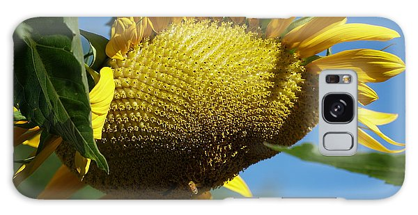 Sunflower, Mammoth With Bees Galaxy Case