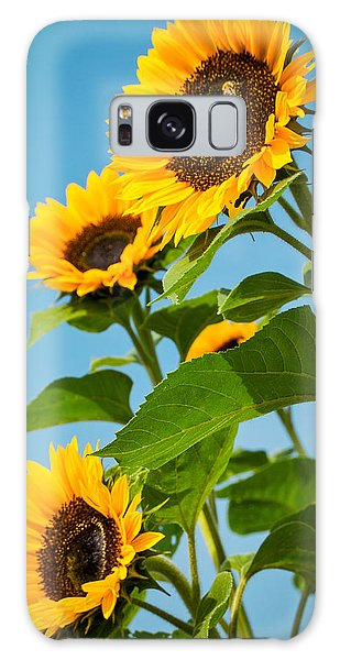 Sunflower Morning Galaxy Case