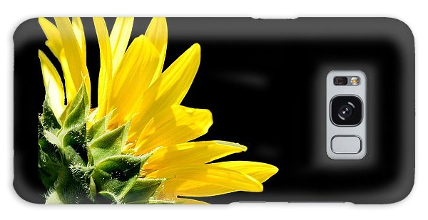 Sunflower On Black Galaxy Case
