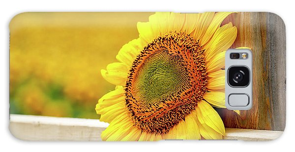 Sunflower On The Fence Galaxy Case