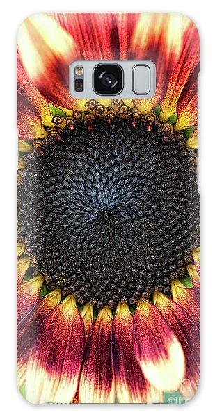 Helianthus Annuus Galaxy Case - Sunflower Pastiche by Tim Gainey