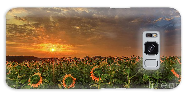 Sunflower Peak Galaxy Case