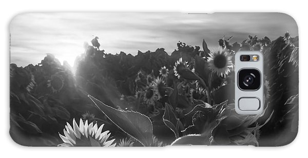 Sunflower Rise In Black And White Galaxy Case