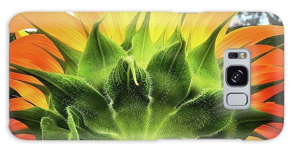 Sunflower Sunburst Galaxy Case