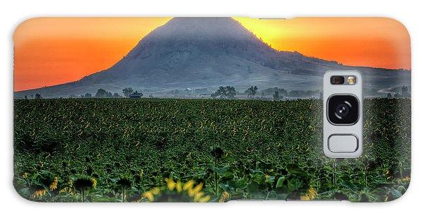 Sunflower Sunrise Galaxy Case