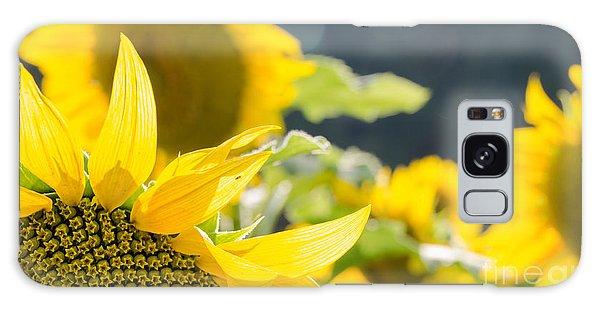Sunflowers 14 Galaxy Case