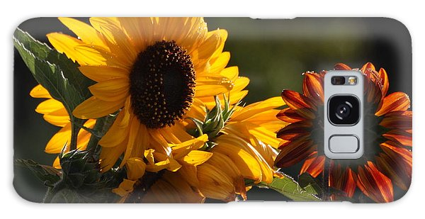 Sunflowers 8 Galaxy Case