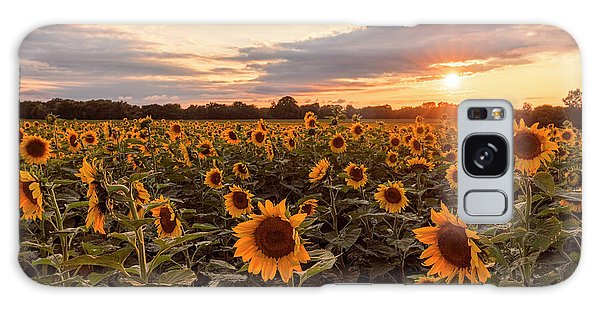 Sunflowers At Sunset Galaxy Case by Scott Bean