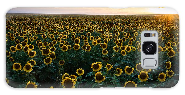 Sunflowers At Sunset Galaxy Case