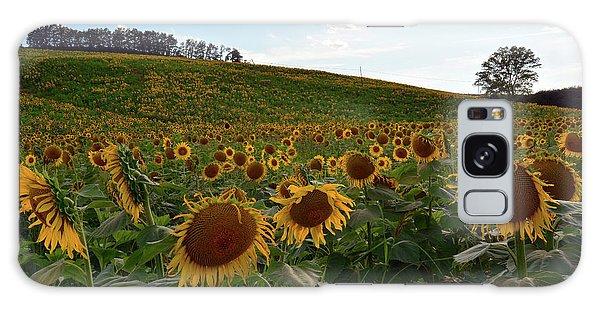 Sunflowers Fields  Galaxy Case