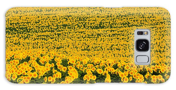 Sunflowers Galore Galaxy Case by Catherine Sherman