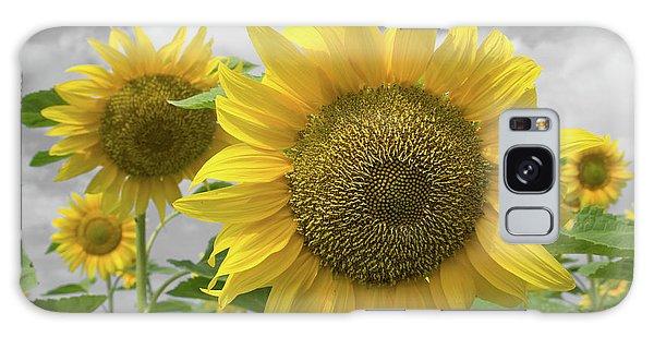 Sunflowers IIi Galaxy Case