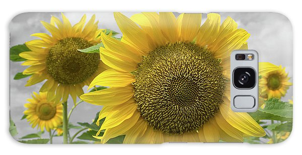 Sunflowers IIi Galaxy Case