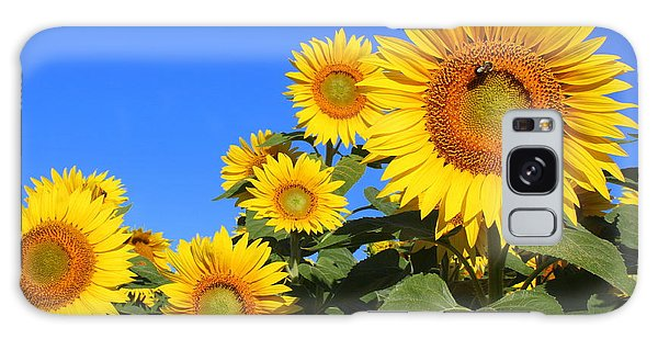 Sunflowers In Blue Galaxy Case