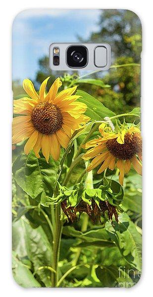 Sunflowers In Sunshine Galaxy Case