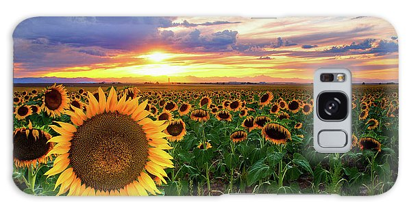 Sunflowers Of Golden Hour Galaxy Case by John De Bord
