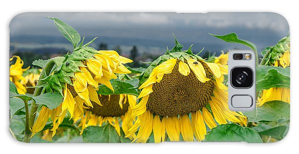 Sunflowers On A Rainy Day Galaxy Case