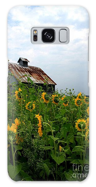 Sunflowers Rt 6 Galaxy Case