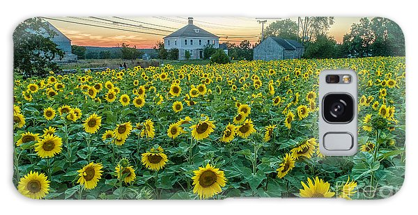 Sunflowers For Wishes  Galaxy Case