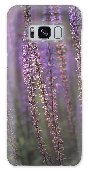 Sunlight On Lavender Galaxy Case by Jacqui Boonstra