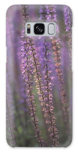 Sunlight On Lavender Galaxy Case