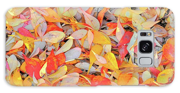 Sunlight On Barberry Leaves Galaxy Case by Michele Penner